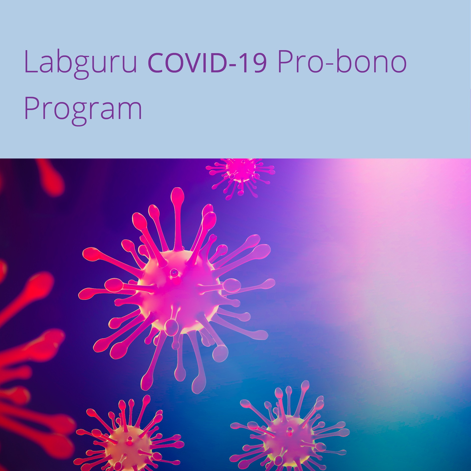 Pro-Bono-program